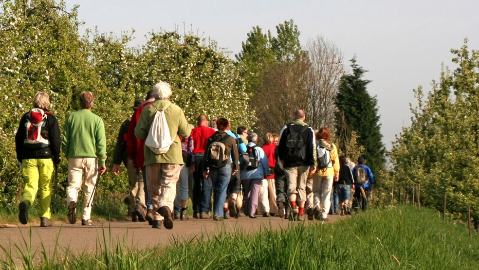 A group of hikers walking along a country lane
